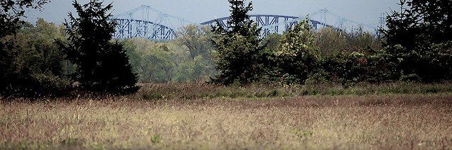 field of bridges. . . . .