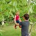 Monkey in a tree by Gemma Hayley