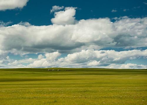 blue sky nikon mongolia ger bulgan d700 saixan goznaraw