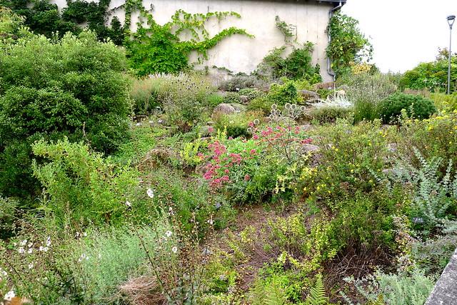 Jardin botanique limoges flickr photo sharing - Jardin mediterraneen limoges ...