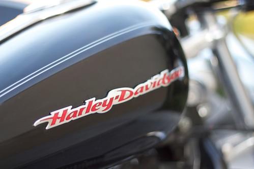 Harley Davidson Tank Logo