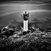 Navigation Light by Steve Deligan