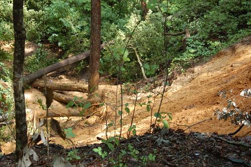 WE Mudslide behind Cabin #3