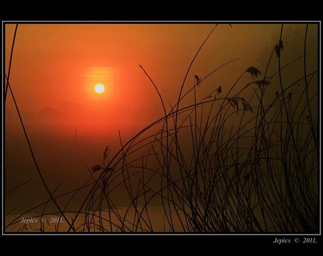Burning The Morning Mist.
