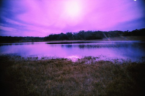 film water 35mm landscape xpro crossprocessed pond fuji purple florida crossprocess scenic magenta violet dry gone trail velvia drought fl tallahassee 50 expired vivitar uws joggingtrail hikingtrail colorshift miccosukee driedup walkingtrail ultrawideslim nolongerthere colourshift leoncounty miccosukeecanopyroadgreenway nowdriedup welauneepond 2010wyntersdarkness wyntersdarkness welaunee miccosukeecanopyroadgreenwaytrail anomyk