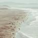 Ocean Beach, SF by Leslie Gonzales