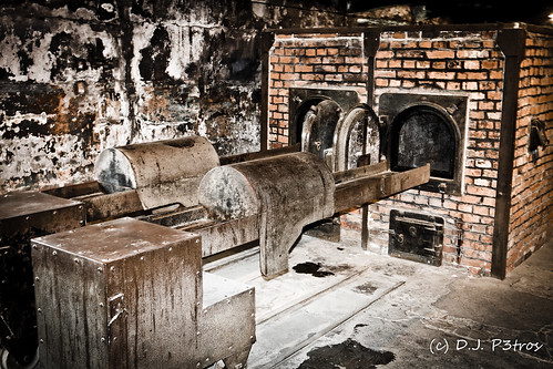 Ovens in Auschwitz by DJP3tros