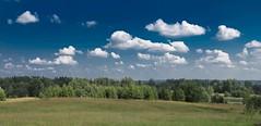 Lõuna-Eesti 2011