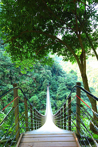 01Y0竹山天梯-梯子吊橋