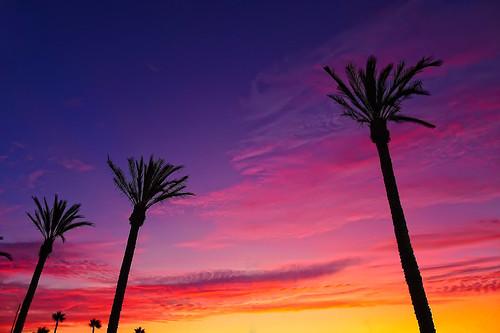 sunset lumix parkinglot panasonic wholefoods southerncalifornia tustin lx5 dmclx5