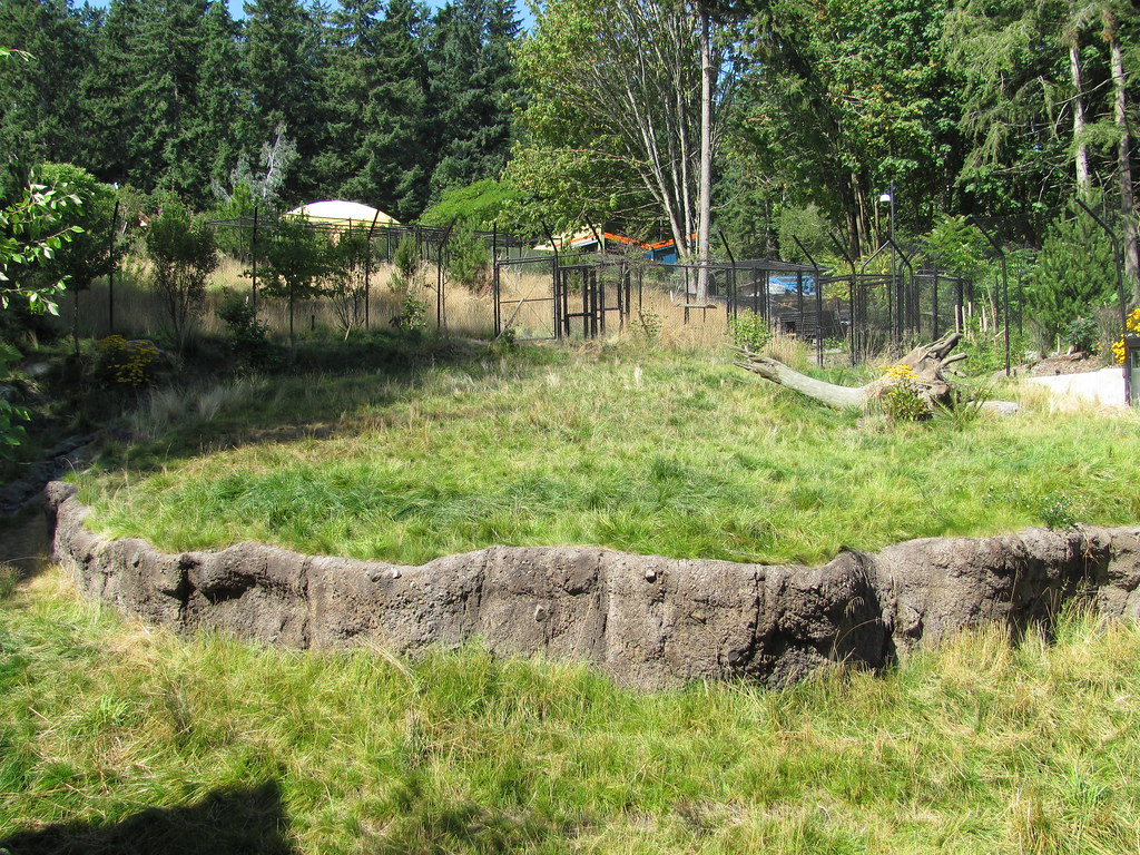 Red Wolf Habitat | Point Defiance Zoo | Photos by Paul and