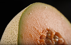 cantaloupe, honeydew, macro photography, produce, fruit, food, close-up, muskmelon, melon,