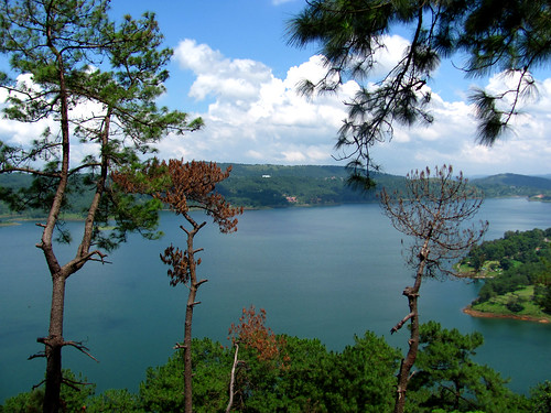 Find Hotels in shillong