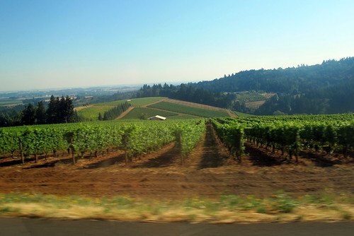 Dundee Oregon - Wine Country