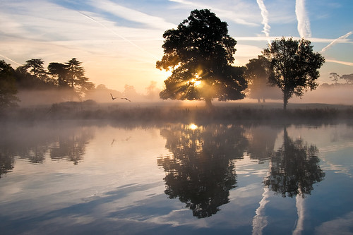 mist lake reflection misty sunrise dawn contrails slough berkshire kevday langleypark