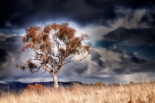 In colour. Another winter storm coming in from the Australian Alps. Canberra, Australia.  ©2011
