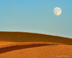 Palouse Moonrise