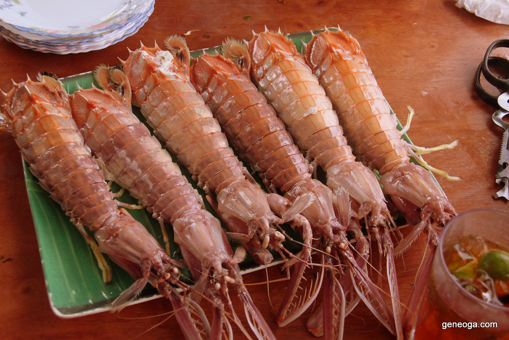 Boiled mantis shrimp ready to be eaten