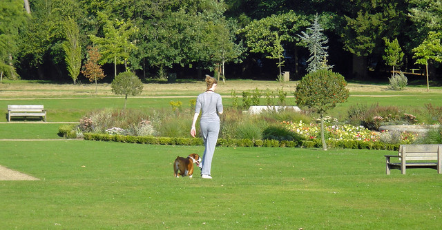 Reigate Priory Park - Aug 2011 - Girl Walks Dog Candid