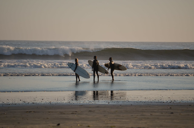 Surfers waiting to catch a wave in Chesterman beach