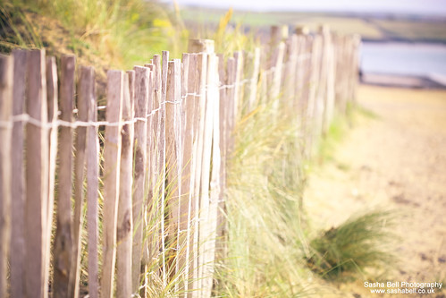 Beachy Fence