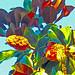 magnolia_pods