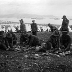 Preparing for the 'billies' at a Sarpi Rest Camp