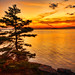 Acadia National Park Twilight by Greg from Maine