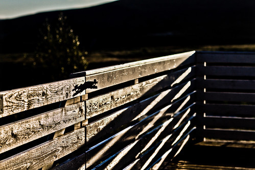 sunset shadow sunlight canon fence eos iceland shadows 7d canonef50mmf14 girðing