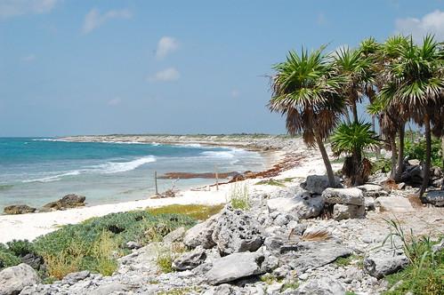 Descubre la diversión en Playa Caletita