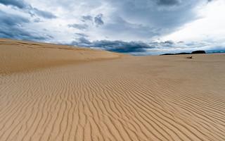 Henty Dunes  - West Coast, Tasmania