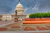 Capitol Flowers in HDR by rongor