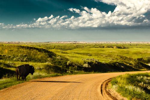morning clouds southdakota sunrise landscape buffalo wildlife badlands bison badlandsnationalpark