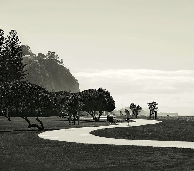 Beach Domain, Napier.