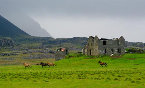 Storm, Ruins, Horses
