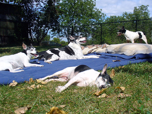 2011-09-08 - Afternoon Sunshine - 0053