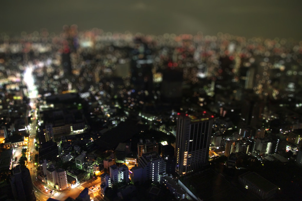 View from Tokyo Tower which looks like a miniature