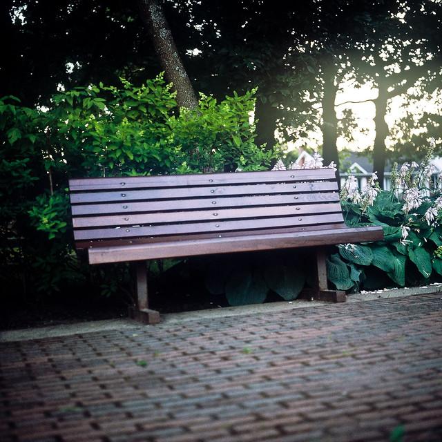 Les bancs, c'est un peu comme les fleurs...