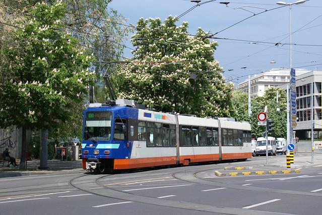 2008-05-11, Genève, Rond-Point de Plainpalais
