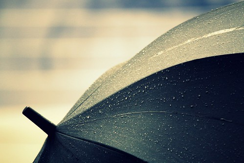 If only I could put a wish in each raindrop, watch it fall from the skies and have it become a reality on earth.