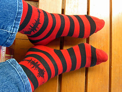 art(0.0), arm(0.0), wool(0.0), knitting(0.0), thread(0.0), textile(1.0), red(1.0), limb(1.0), sock(1.0),