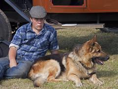 eurasier(0.0), wolfdog(0.0), dog breed(1.0), german shepherd dog(1.0), animal(1.0), dog(1.0), pet(1.0), mammal(1.0), police dog(1.0),