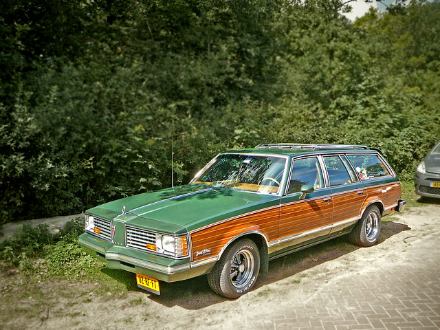 1988 Pontiac Safari Wagon Related Infomation