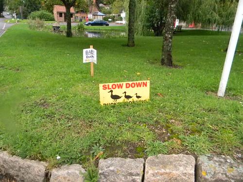 Duck signs. N Waltham