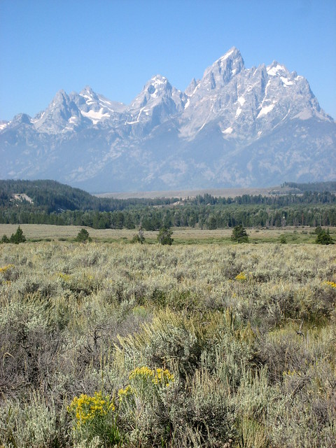 Loving the Tetons