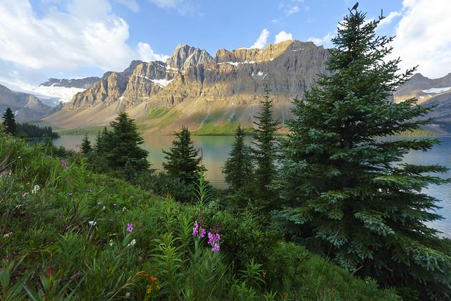Jewel Tones of Bow Lake