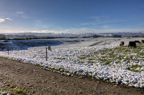snow farm massey tararua