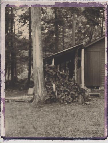 landscape polaroid cabin shed maine birch unfocused tress woodshed cutwood cholcolate 250landcamera