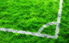 [Free Images] Sports, Ball Games, Association Football, Green Color, Lawn ID:201205071200