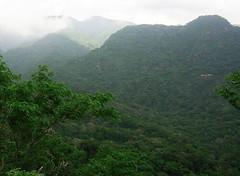 El Imposible National Park